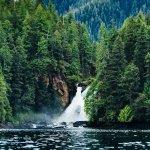 Yes Bay Lodge Alaska fishing lodge image19