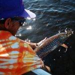 Cobham River Lodge Manitoba fishing lodge image7