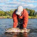 Alagnak Lodge Alaska fishing lodge image41