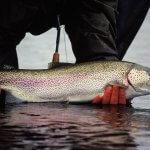 Alagnak Lodge Alaska fishing lodge image13