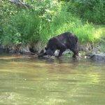Alaska Fish On Charters Alaska fishing lodge image18