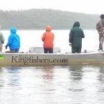 Alaska Kingfishers Alaska fishing lodge image6
