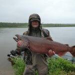 Alaska Kingfishers Alaska fishing lodge image15