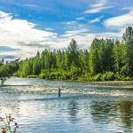 Wilderness Place Lodge Alaska fishing lodge image45