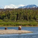 Alaska's Gold Creek Lodge Alaska fishing lodge image23