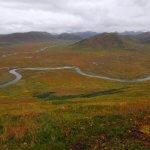 AlpenView Wilderness Lodge Alaska fishing lodge image21
