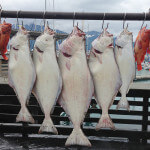 Anglers Lodge Alaska fishing lodge image55