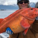 Anglers Lodge Alaska fishing lodge image31
