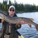 Alaska's Anvik River Lodge Alaska fishing lodge image6