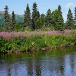 Bearclaw Lodge Alaska fishing lodge image6