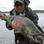 Becharof Rapids Camp Alaska fishing lodge image11
