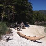 Blackfish Lodge BC fishing lodge image4