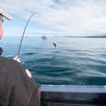 Cascade Creek Lodge Alaska fishing lodge image15