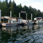 Chinook Shores Lodge Alaska fishing lodge image22