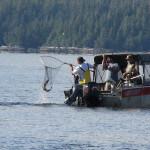 Chinook Shores Lodge Alaska fishing lodge image8
