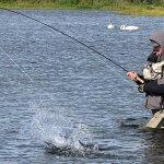 Dierick's Tsiu River Lodge Alaska fishing lodge image9