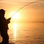 Dierick's Tsiu River Lodge Alaska fishing lodge image8