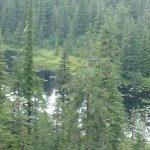 Dierick's Tsiu River Lodge Alaska fishing lodge image3