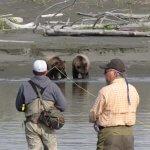 Dierick's Tsiu River Lodge Alaska fishing lodge image12
