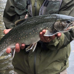 FishHound Expeditions Alaska fishing lodge image21