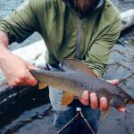 FishHound Expeditions Alaska fishing lodge image23