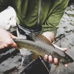 FishHound Expeditions Alaska fishing lodge image42