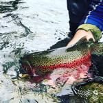 FishHound Expeditions Alaska fishing lodge image48