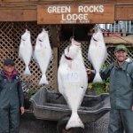 Green Rocks Lodge Alaska fishing lodge image10