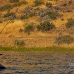 Grindstone Lakes Oregon fishing lodge image6
