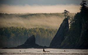 Haida Gwaii Canada fishing lodges and resorts