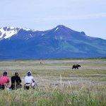 Alaska Trophy Adventures Lodge Alaska fishing lodge image31