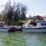 Vancouver Island Lodge BC fishing lodge image5