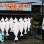 Glacier Bear Lodge Alaska fishing lodge image2