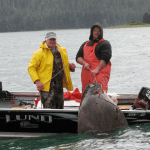 Island Point Lodge Alaska fishing lodge image5