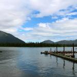 Island Point Lodge Alaska fishing lodge image10