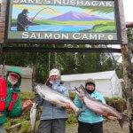 Jake's Nushagak Salmon Camp Alaska fishing lodge image34