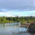 Jake's Nushagak Salmon Camp Alaska fishing lodge image8