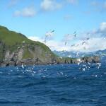 Kodiak Adventures Lodge Alaska fishing lodge image26