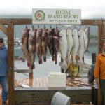 Kodiak Island Resort Alaska fishing lodge image10