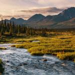 Kodiak Sportsman's Lodge Alaska fishing lodge image3