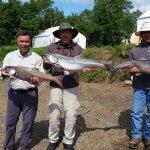 King Salmon Outfitters Alaska fishing lodge image5