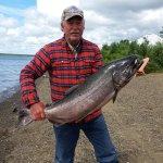King Salmon Outfitters Alaska fishing lodge image3