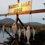 Majestic Eagle Lodge Alaska fishing lodge image1