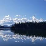 Majestic Eagle Lodge Alaska fishing lodge image2