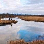 Monti Bay Lodge & Resort Alaska fishing lodge image1