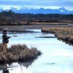 Monti Bay Lodge & Resort Alaska fishing lodge image7