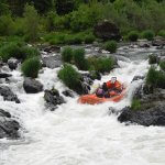 Morrison's Rogue Wilderness Adventures & Lodge Oregon fishing lodge image15