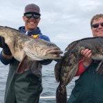 North King Lodge BC fishing lodge image5