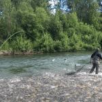 Northwoods Lodge Alaska fishing lodge image16