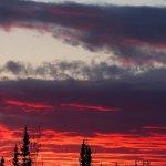 Nushagak King Salmon Safari Alaska fishing lodge image4